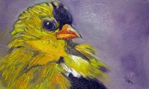 American Goldfinch, 2014. (Oil, 4 x 6)