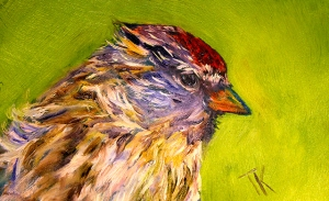Common Redpoll, 2014. (Oil, 4 x 6)