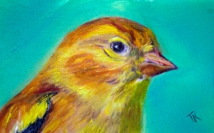 Goldfinch 2, 2014. (Oil, 4 x 6)