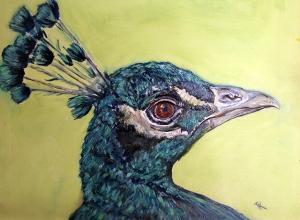 Peacock, 2014. (Oil, 9 x 12)