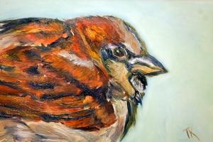 Sparrow, 2014. (Oil, 4 x 6)